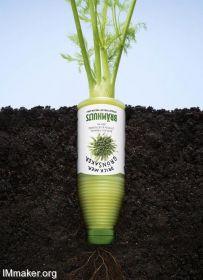 每一棵蔬菜,都会成为—饮料