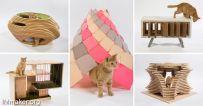 洛杉矶建筑公司为慈善设计的12例猫收容所