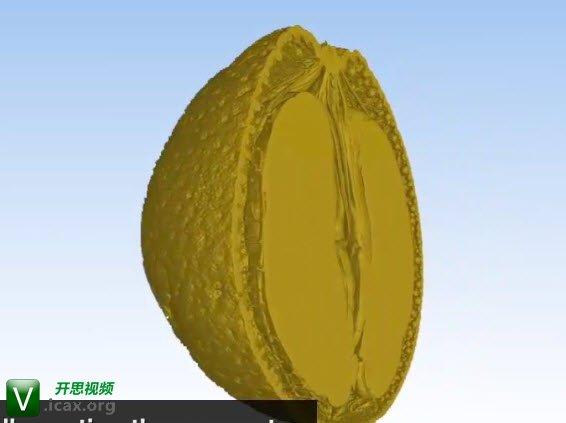 Laser Design, Inc. - CT Scan of an Orange.jpg